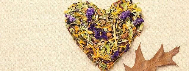 Купить сбор трав для сердечно-сосудистой системы. Травяные сборы для сердечно-сосудистой системы по низким ценам в интернет-магазине лечебных трав